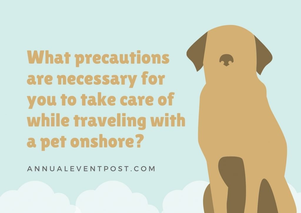 What precautions are necessary for you to take care of while traveling with a pet onshore?