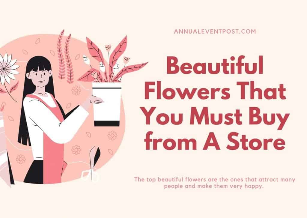 Beautiful Flowers That You Must Buy from A Store