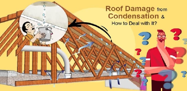 Roof Damage from Condensation & How to Deal with It?